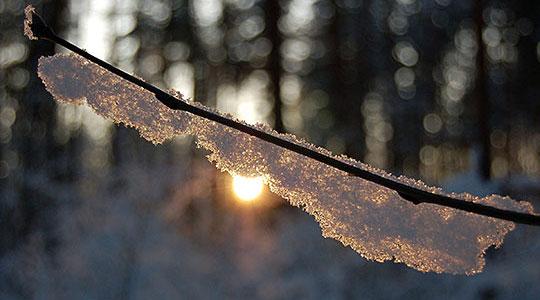 Променливо облачно и студено време, слаб снег во западните и јужни делови