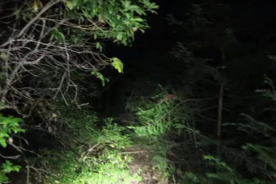 Ова е морбидната шума на смртта: Ретко кој излегува жив од неа (ВИДЕО)
