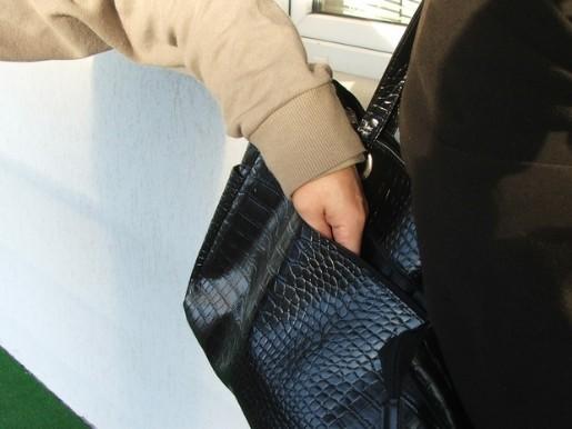 Поднесено обвинение против 20-годишник од с.Чегране – украл 50 евра од жена