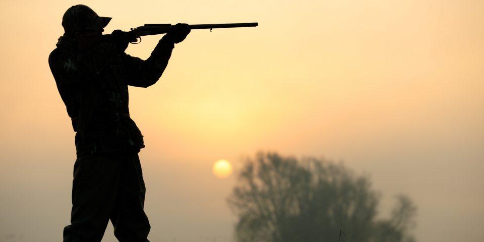 Ловџија повреден за време на лов во Мариово