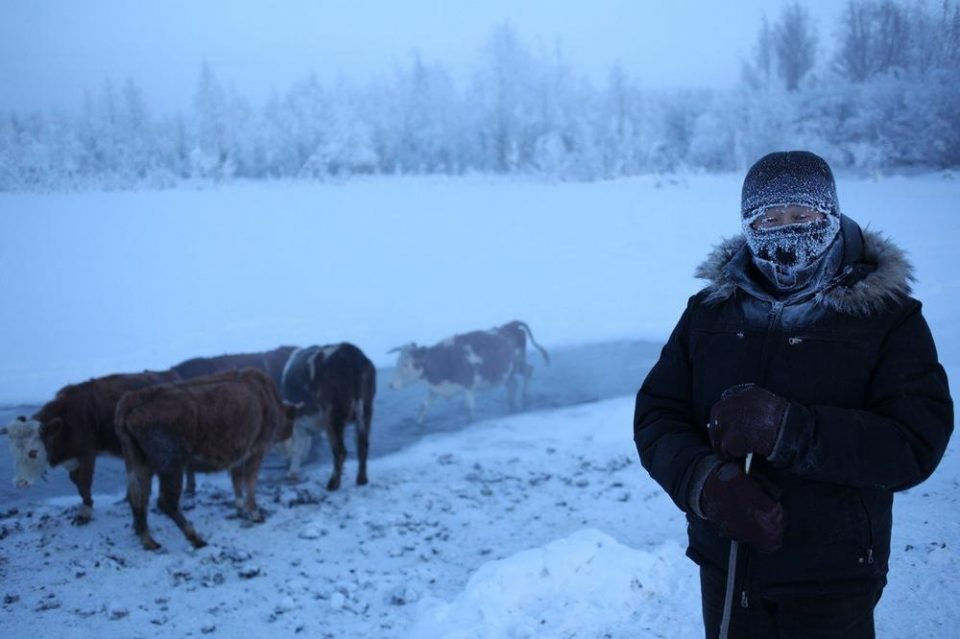 Овде температурата паѓа и до -70: Во најладното село на светот луѓето живеат долго, ќе се шокирате кога ќе слушнете зошто (ВИДЕО)