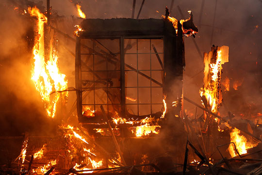Пожар во зоолошка градина, го гаснеле 70 пожарникари- едно животно исчезнато