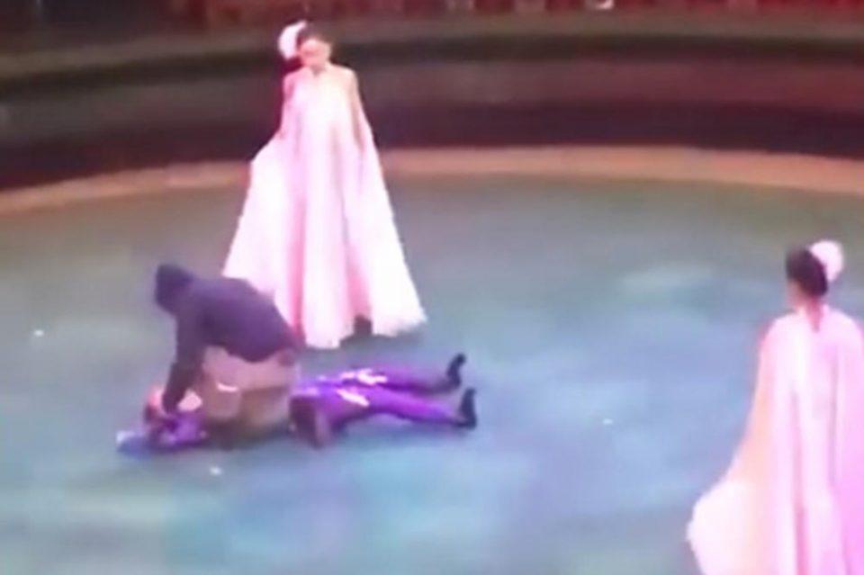 Акробатка паѓа, децата се дерат: Циркуска точка се претвори во хорор (ВИДЕО)