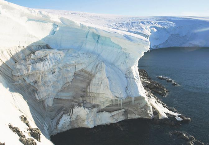 Антарктик: Пронајдени фосили стари 280 милиони години