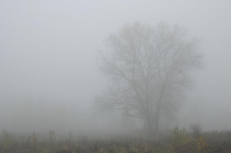 Облачно време со магла по котлините