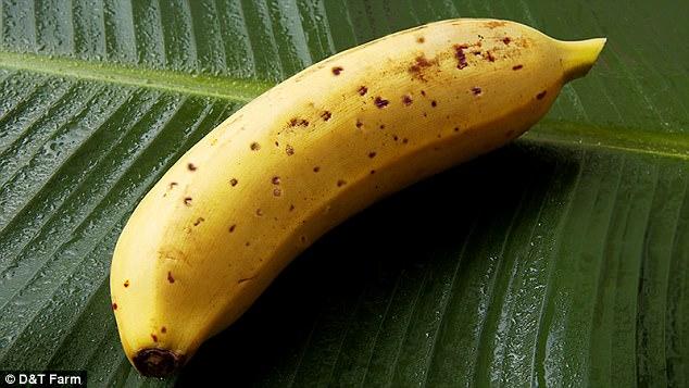 Јапонците со нов изум: Одгледуваат банани со кора која се јаде