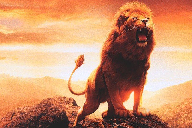 Родените во знакот Лав ќе се препознаат во овие мудрости