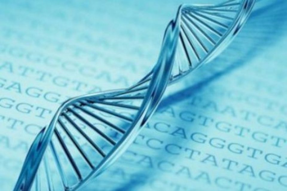 Гените откриваат кога настапува смрт