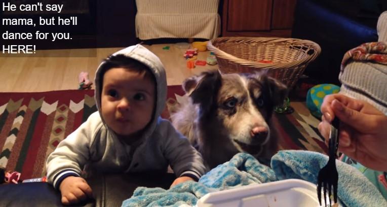 """Мајка го замолила бебето да каже """"мама"""", но обратете внимание на она што го направило кучето (ВИДЕО)"""