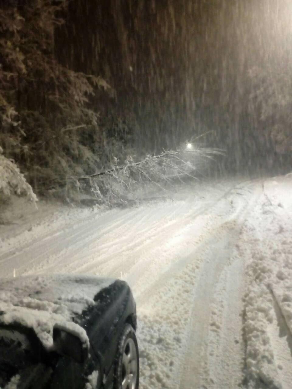 Ресен без струја, непроодни патишта и затрупани улици – Властите се уште не излегле на терен (ФОТО)