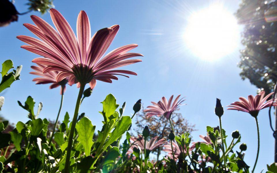 Времето денес сончево и топло- во сабота голем пресврт на времето, еве какво време не очекува во недела на Велигден