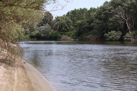 Реките со зголемен водостој