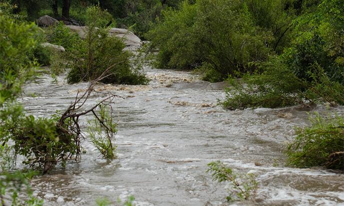 УЖАСНО НЕВРЕМЕ ВО КУМАНОВО:  Поплавени куќи, подрумски простории, гаражи и булевари (ФОТО)