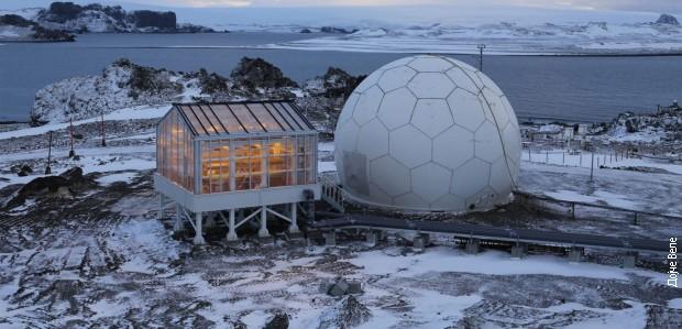 Германски научници одгледаат зеленчук на Антарктикот