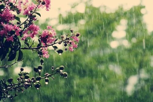 Април не е на наша страна: Дожд ќе врне цел месец, а еве какво време не очекува за време на Велигден