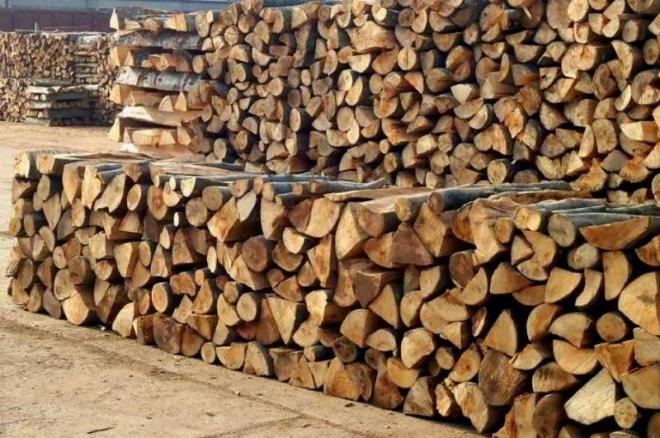 Маж и жена од Скопје измамени со продажба на дрва