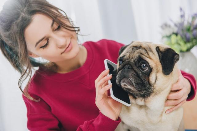 Дали зборувате со вашите миленичиња? Продолжете, тоа е добро за вас