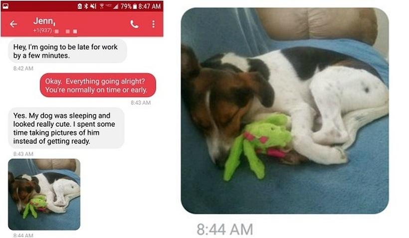 Му пишала на шефот дека ќе доцни на работа: Нејзината причина е несекојдневна, но неговиот одговор стана хит (ФОТО)