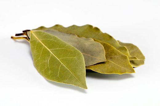 Запалете ловоров лист во домот, ќе ви помогне за многу болести