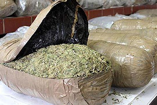 Во Албанија запленети над 600 килограми марихуана