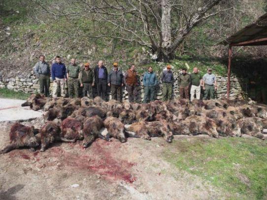Нетпрес: Поранешни политичари масакрирале дивеч во Јасен