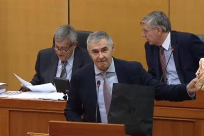 Циркуз во Собрание – пратеник извади штикли и танга на говорница (ВИДЕО)