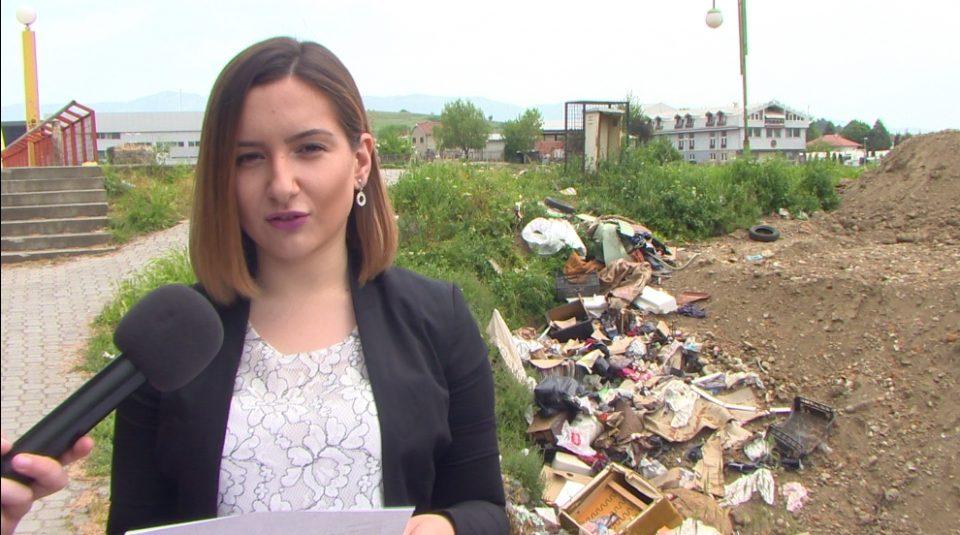 Андоновска: Богоев ветуваше голем парк, но наместо тоа има еколошка бомба и купишта ѓубре