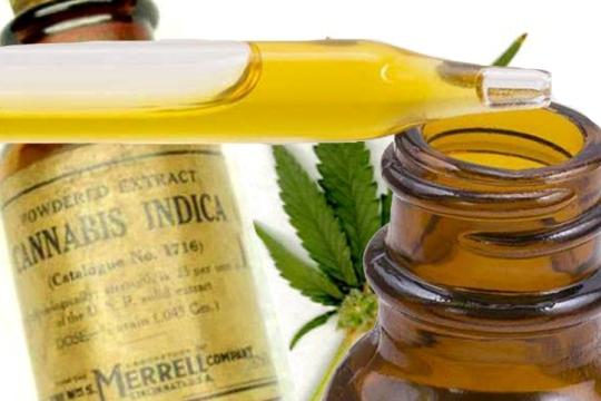 Семинар и дебата за примената на маслото од канабис во медицински цели