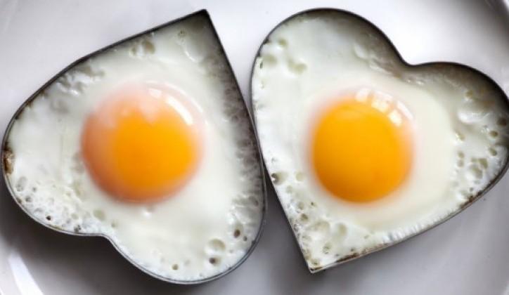 Разбиен еден од најголемите митови за храна и здравје