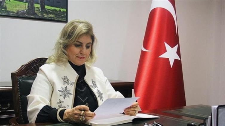 """Турската амбасадорка Кара: Училиштето """"Јахја Кемал"""" е терористичка организација"""