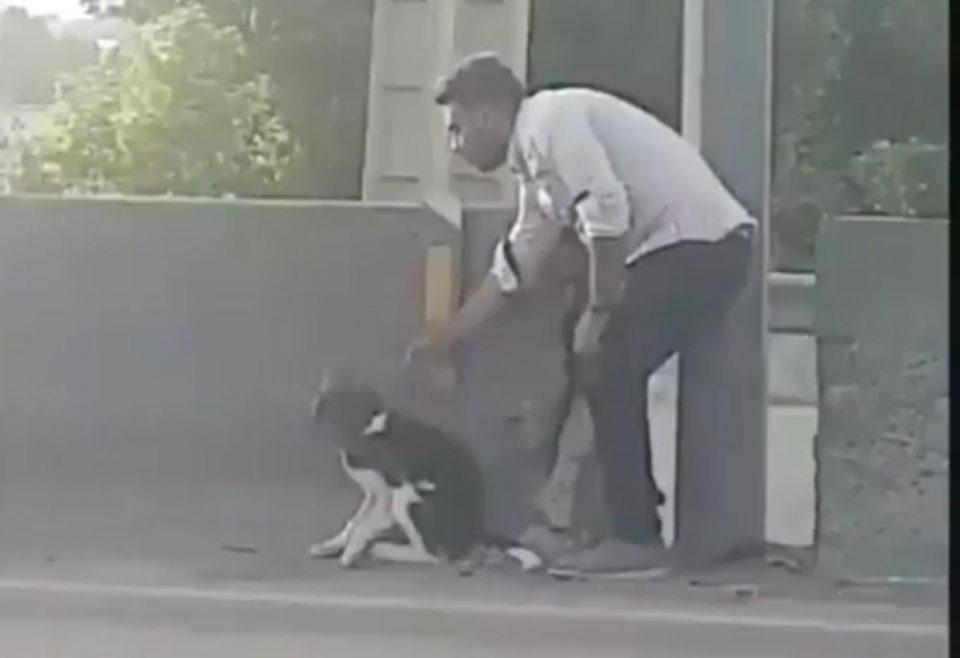 Дали ова е маж на годината: Она што го направи за малото кученце не би го направил никој (ВИДЕО)