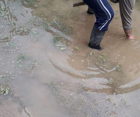 Поплавени куќи во Црешево и Стајковци по обилните врнежи во Скопје