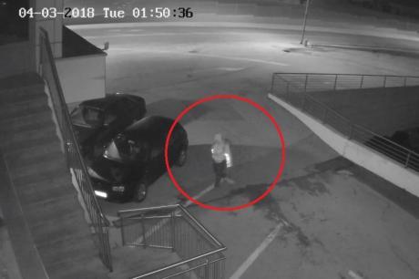 Сопственик нуди награда за било каква информација за крадецот од снимкава (ВИДЕО)