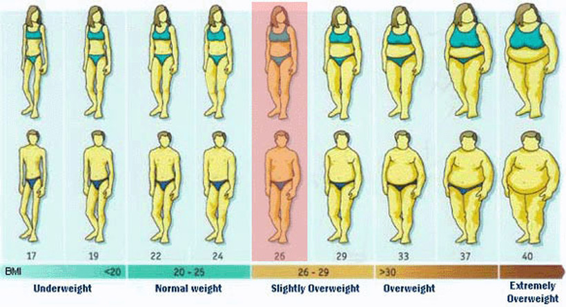 Која е вашата идеална тежина: Поделете два броја и откријте