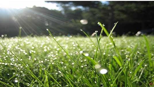 Преку ден сончево, попладне со поројни дождови