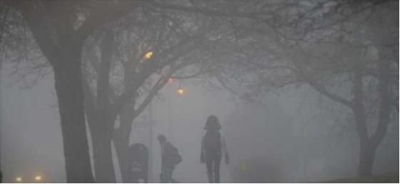 Кочани на нозе поради енормно загадениот воздух