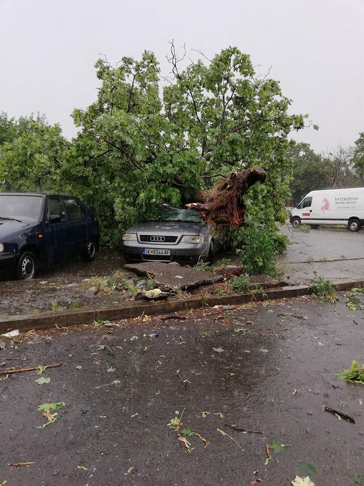 Скопје поплавено, оштетени автомобили, надлежните без соодветна реакција по силното невреме (ФОТО)