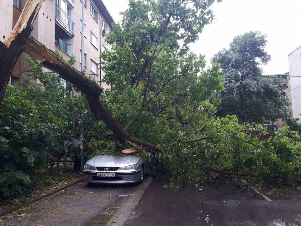 Искршени дрвја и вода по улиците од невремето во Скопје