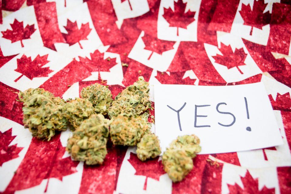 Канада легализира рекреативна употреба на марихуана