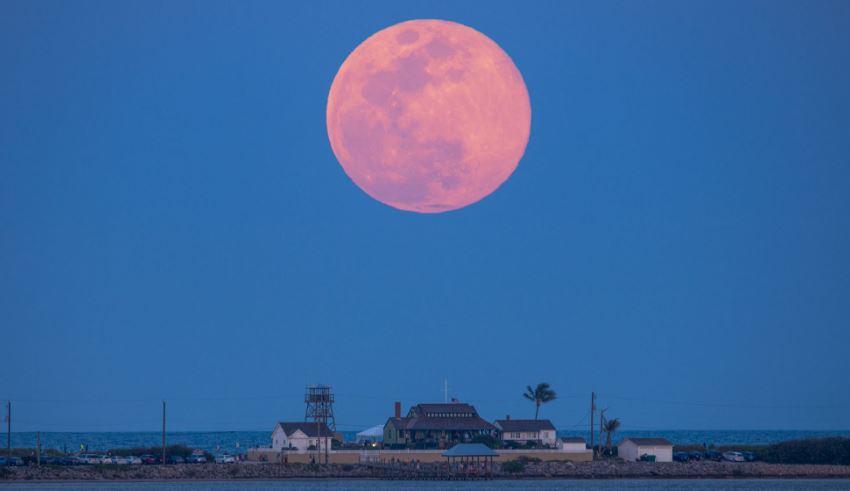 Вечерва месечината е розова и полна- еве како влијае на вашиот хороскопски знак