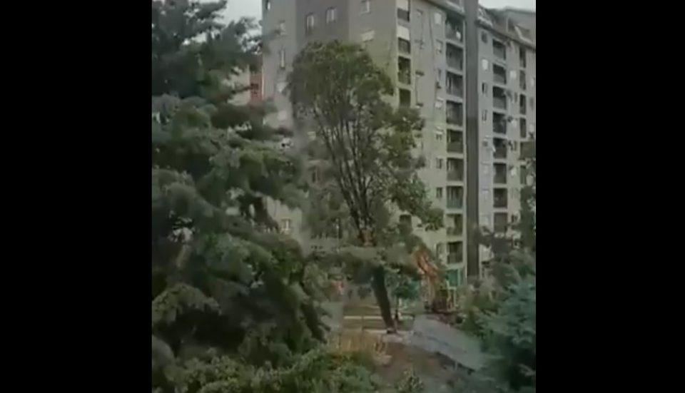 ВИДЕО: Луѓе кои кариери направија на улица како паркобрани, ќутат пред оваа катастрофа
