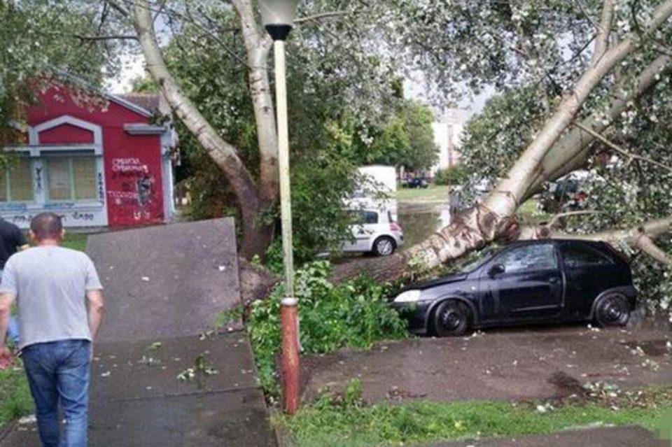Невремето предизвика хаос во Србија: Десет минути пекол, силниот дожд донесе хаос, улиците поплавени, дрва на улица (ФОТО ГАЛЕРИЈА)