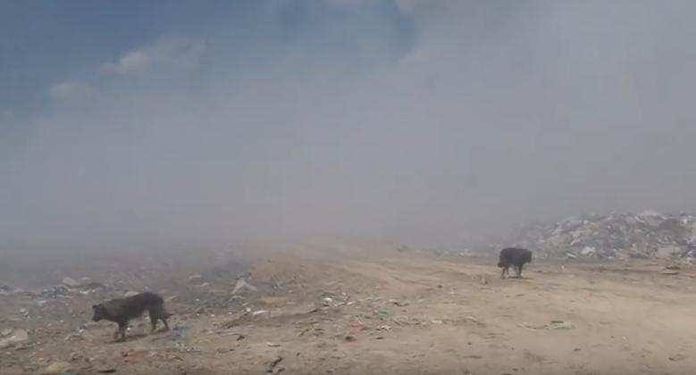 Лoзановска: Пожарот во битолската депонија е еколошка бомба – ова е доказ за неспособност и несовесно работење