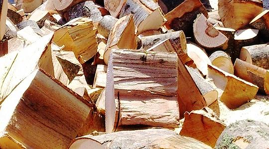 Кривична пријава за радовишани за присвојување и отуѓување огревно дрво