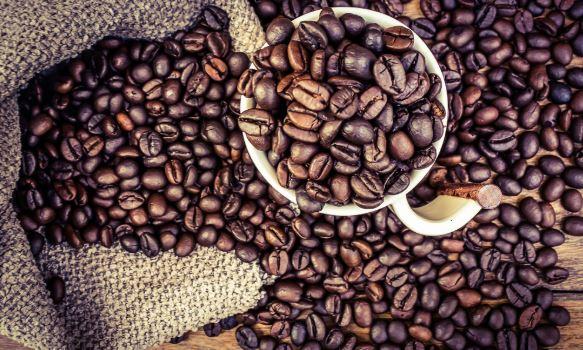 Студија: Кафето може да ви го продолжи животот