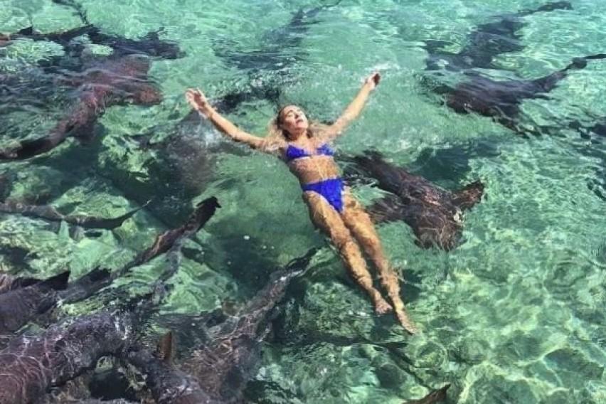 Манекенка позираше во вода на Бахамите: На морските кучиња тоа не им се допадна, па таа можеше да остане без рака (ФОТО)