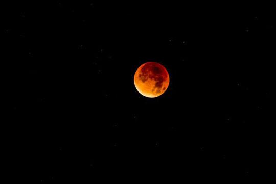 Првата жена ќе отпатува на Месечината до 2024 година