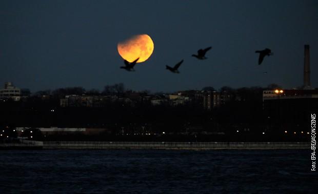 Целосно помрачување на Месечината идната недела