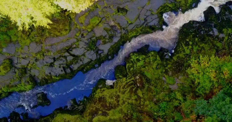 Најопасната река на светот изгледа како питомо поточе: Од неа е скоро неверојатно да излезете живи (ВИДЕО)