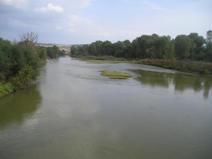 Машки леш вчера пронајден во водите на Вардар, телото ќе се вади денеска
